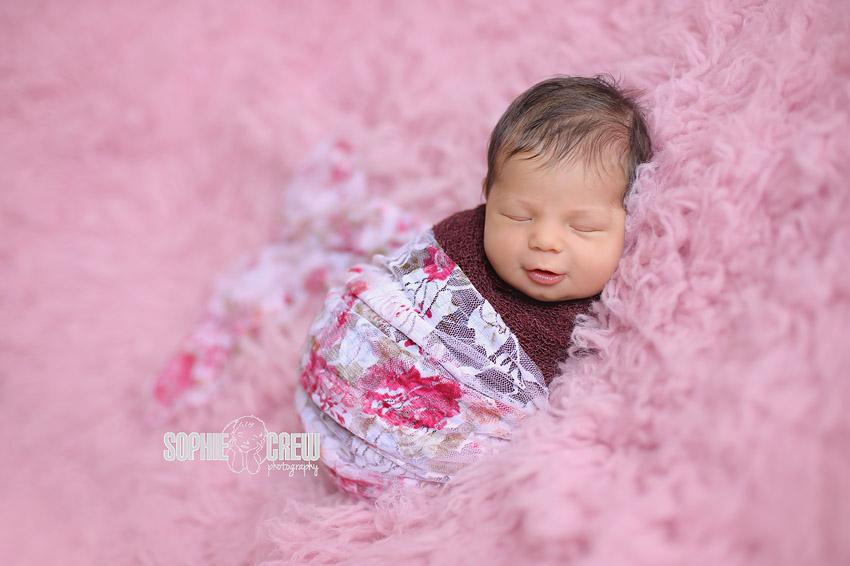 Bird Rock La Jolla Newborn and Baby