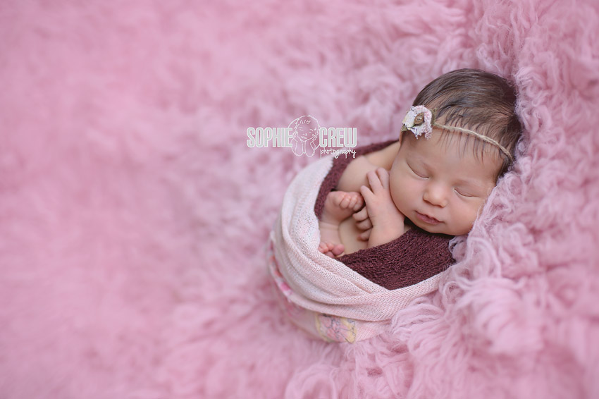 Digital images from newborn session in San Diego