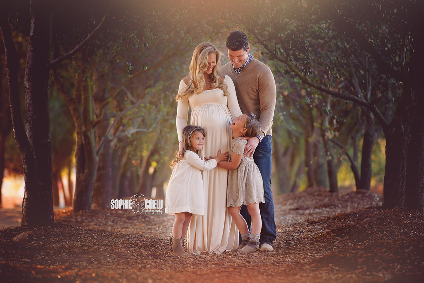 Beautiful Maternity Session in the Hallway of Trees by local premiere maternity and newborn photography artist Sophie Crew.
