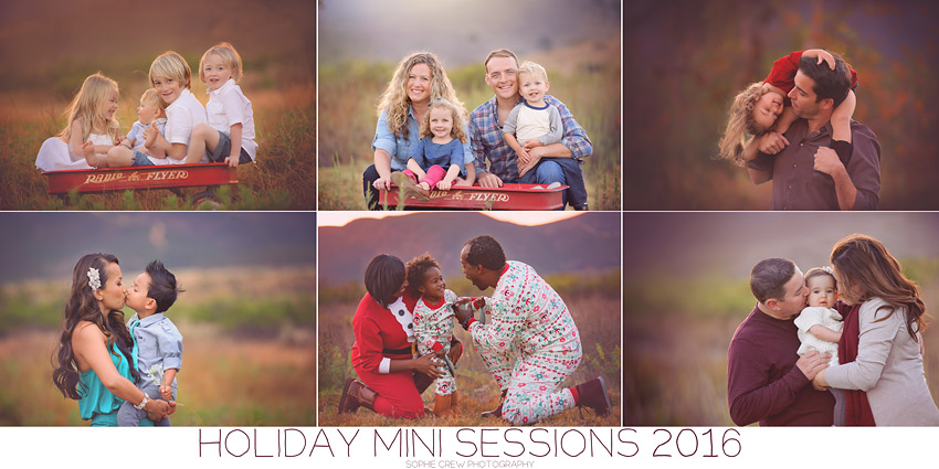 Limited Edition Holiday Mini Sessions 2016