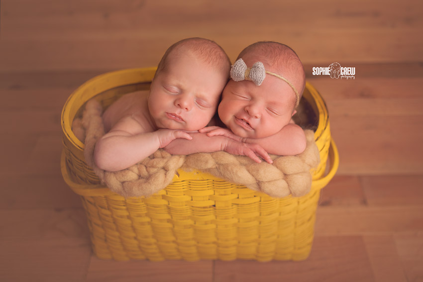 Newborn Photography for twins and multiples in Southern California Best Newborn Twin Photography in San Diego, CA