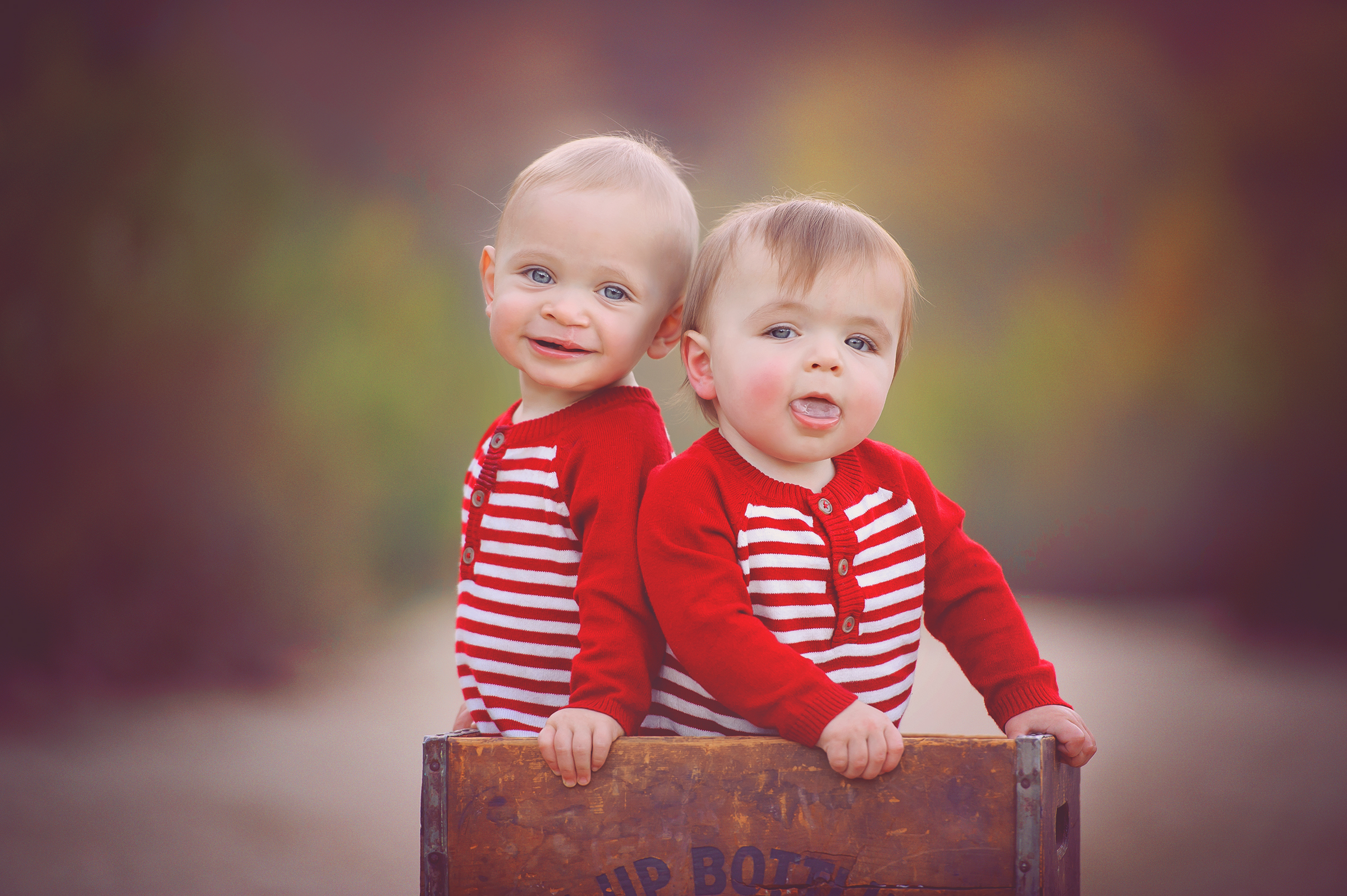 Twin baby photographer in San Diego captures two boys in a wooden crate for portrait outdoor session in Mission Trails