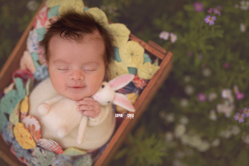 Newborn holds a felt bunny during her outdoor newborn photography session in San Diego
