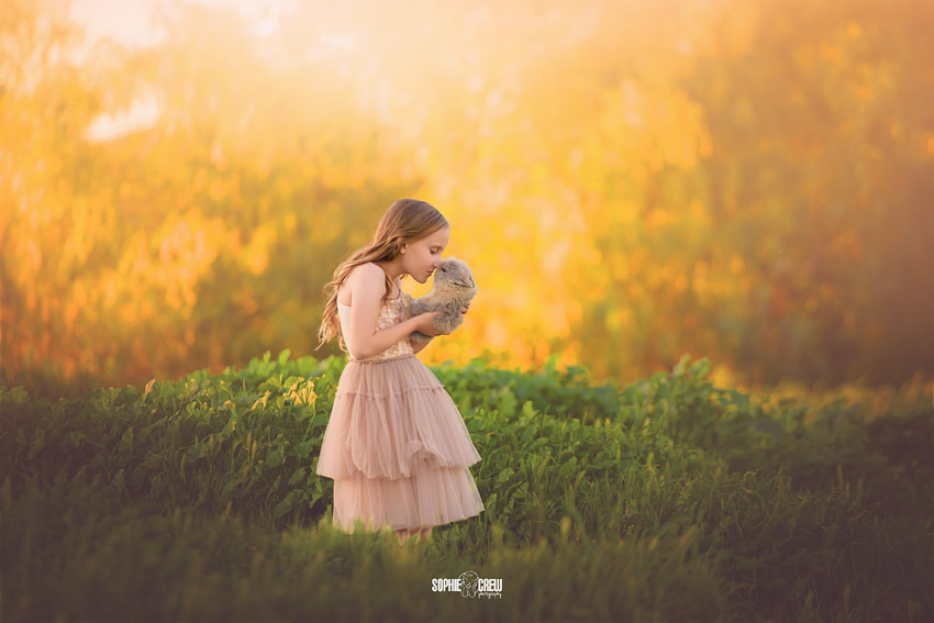 Little girl kisses a cute bunny in a field in San Diego, CA