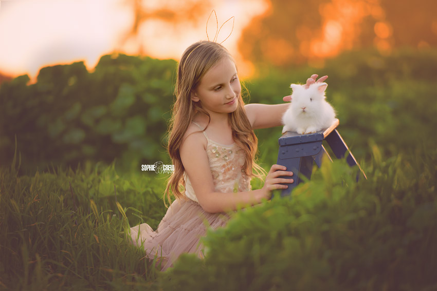 Little girl petting a white bunny on a blue ladder