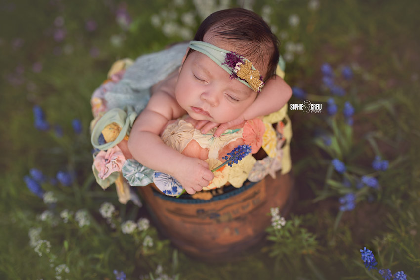 Newborn holding a blue flower for her outdoor newborn photography session