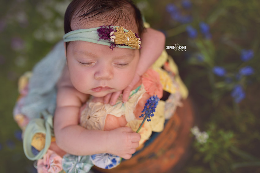 Older newborn holding a flower as her photographer takes her outside for some nature baby photos