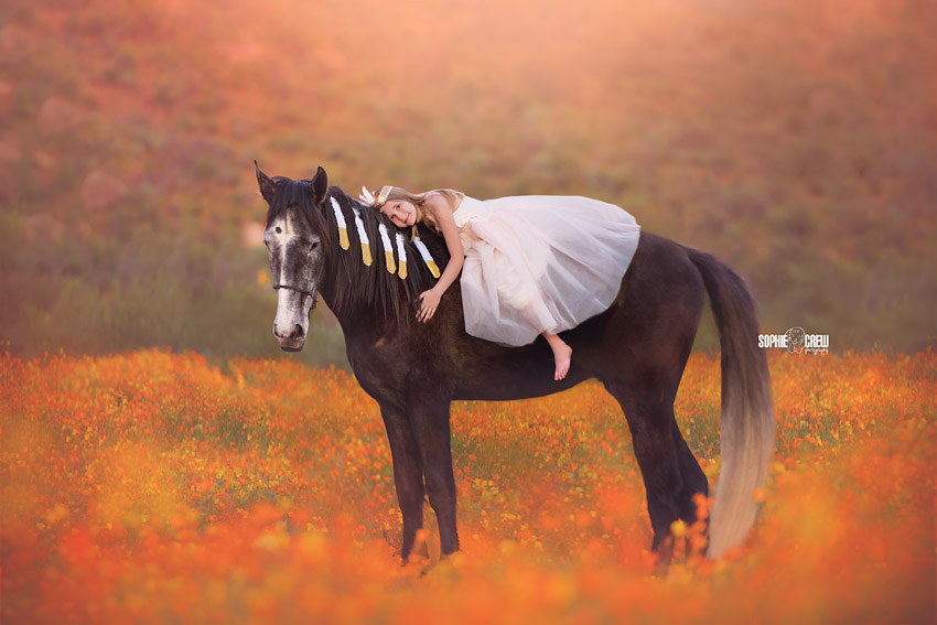 Girl lays on decorated horse in orange flower field in San Diego