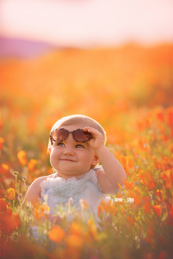 California poppies and baby poses with sunglasses