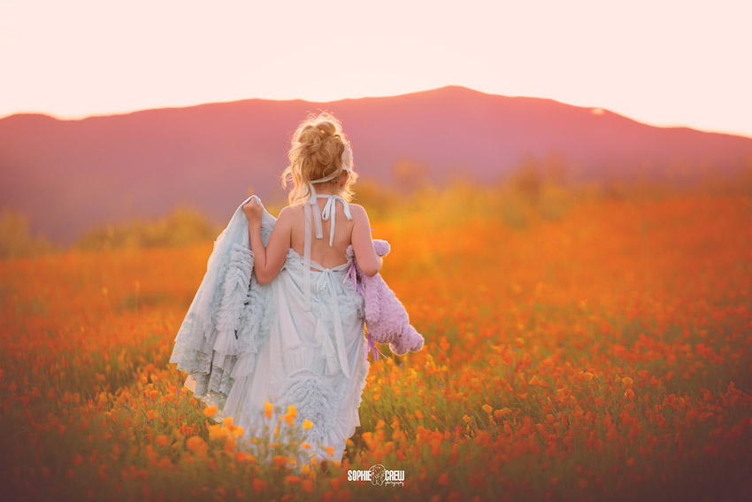 San Diego baby and child photographer captures a girl and her stuffed unicorn in a field of orange wildflowers in San Diego