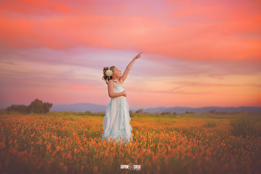 Stunning sunset over California superbloom child photographer