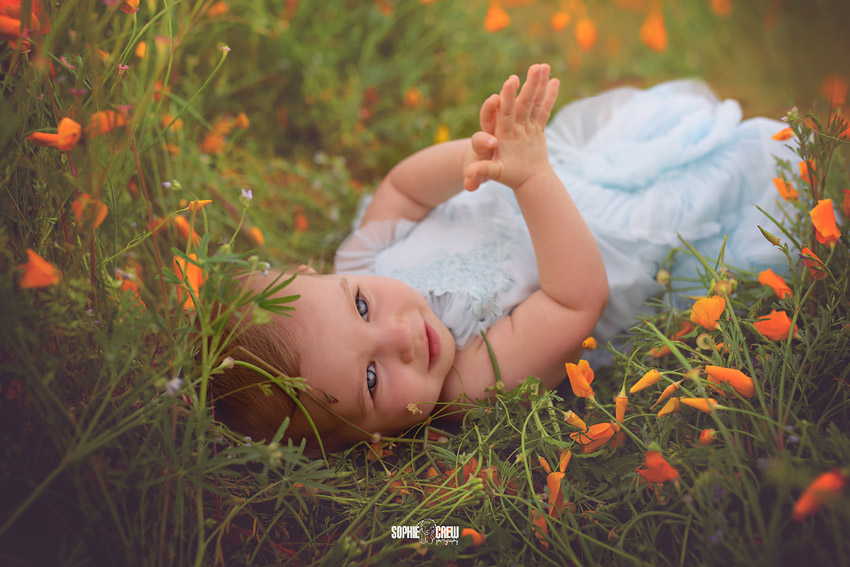 Baby lays in field of wildflowers in San Diego, CA for her photography session with baby photographer Sophie Crew