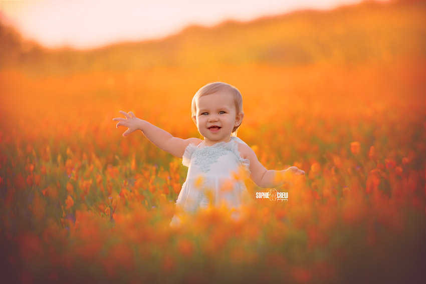 Baby in a blue Dollcake Oh So Girly dress in Orange poppy wildflowers in San Diego, CA