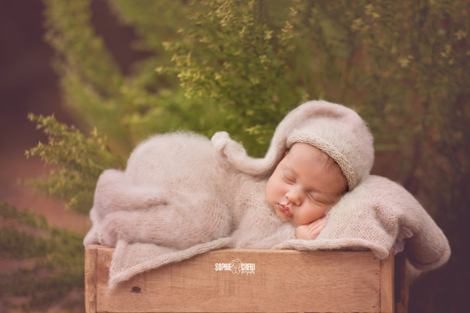 Newborn baby photographer Sophie Crew Photography captures a newborn boy in a knit, cream colored outfit with matching bonnet for an outdoor newborn and family photography session in Mission Trails Regional Park in San Diego, CA.