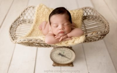 Most popular Newborn Photography Posing Ideas