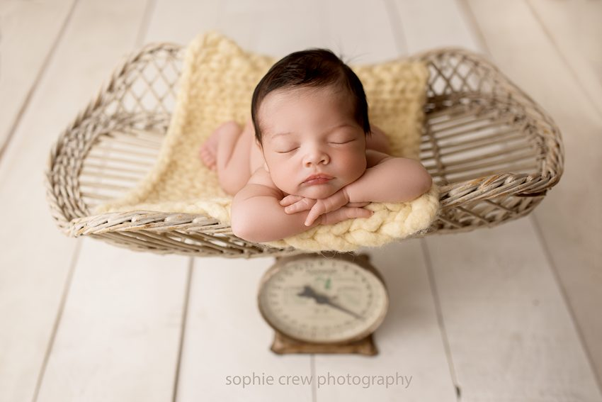 Newborn baby boy posed in a vintage baby scale purchased at an antique shop in San Diego during his newborn photography session in the studio with Sophie Crew Photography in Santee.