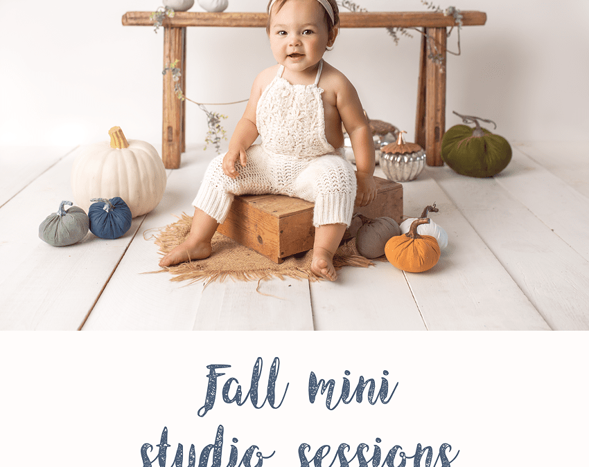 San Diego fall 2018 studio mini sessions with Sophie Crew Photography