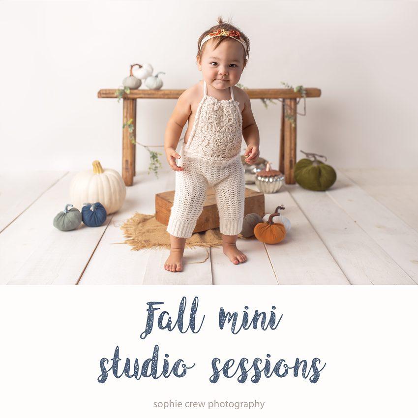 fall studio mini sessions 2018 San Diego, CA