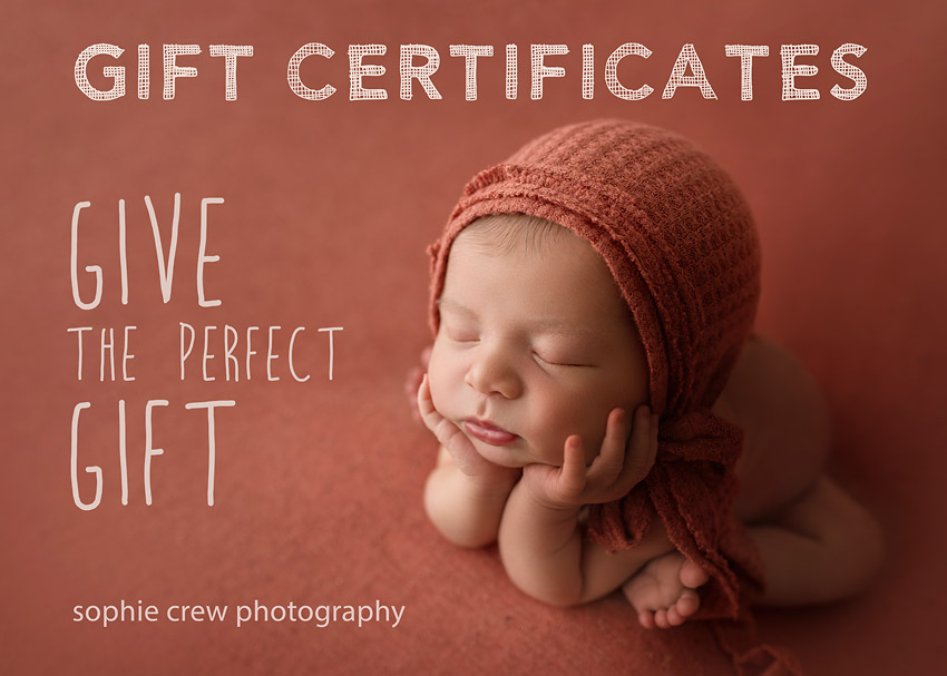 Photography Gift Certificates