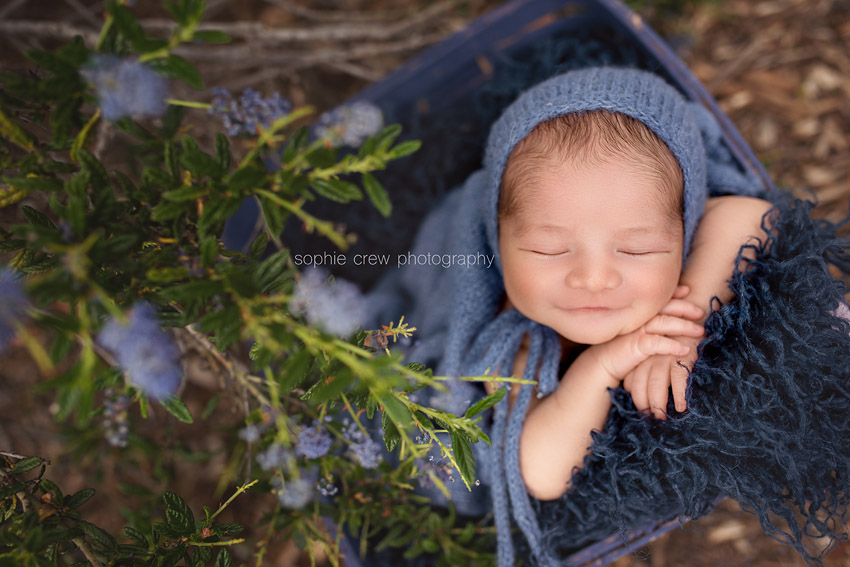 Sophie Crew Photography Outdoor newborn photos