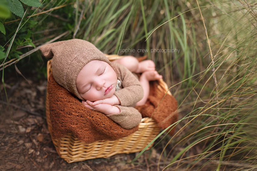 Sleeping infant boy in garden style newborn photoshoot in San Diego